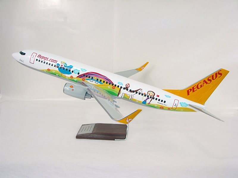 "1/100 scale PacMin Pegasus 737-800 model in special livery. It measures 15"""" (38cm) in length. / Photo courtesy of PacMin"