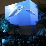 3D projection whale