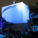 3D projection whale 2